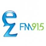 Logo da emissora FM 91.5