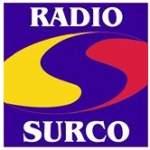 Logo da emissora Radio Surco 90.1 FM