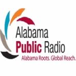 Logo da emissora WUAL 91.5 FM