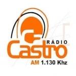 Logo da emissora R�dio Castro 1130 AM