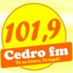 Logo da emissora Rádio Cedro 101.9 FM