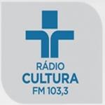 Logo da emissora Rádio Cultura 103.3 FM