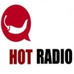 Logo da emissora Hot Radio 98 FM