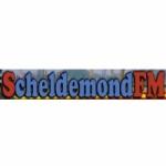 Logo da emissora Scheldemond 105.5 FM