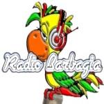 Logo da emissora Barbagia 91.9 FM