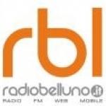 Logo da emissora Belluno 95 FM