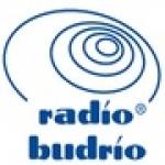 Logo da emissora Budrio 98.5 FM