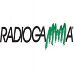 Logo da emissora Gamma 93 FM