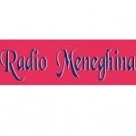 Logo da emissora Radio Meneghina 91.9 FM
