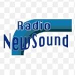 Logo da emissora New Sound 100.8 FM