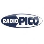 Logo da emissora Pico 101.5 FM