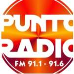 Logo da emissora Punto Radio 91.1 FM