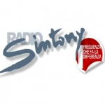 Logo da emissora Sintony 101.1 FM