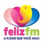 Logo da emissora Rádio Feliz 95.7 FM