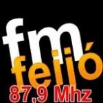 Logo da emissora Rádio FM Feijó 87.9 FM