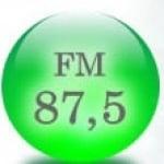 Logo da emissora R�dio Fonte e Vida 87.5 FM
