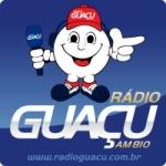 Logo da emissora Rádio Guaçú 1180 AM
