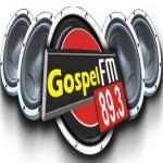 Logo da emissora R�dio Gospel 89.3 FM
