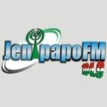 Logo da emissora Rádio Jenipapo 104.9 FM