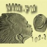 Logo da emissora Radio 2Nim FM 102.3
