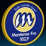 Logo da emissora R�dio Montense 102.9 FM