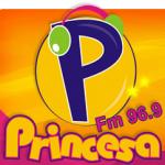 Logo da emissora R�dio Princesa 96.9 FM