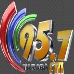 Logo da emissora R�dio Tarob� 95.7 FM