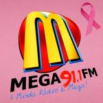 Logo da emissora R�dio Mega 91.1 FM