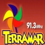 Logo da emissora Rádio Terramar 91,3 FM