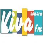 Logo da emissora Rádio Viva 91.9 FM