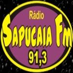 Logo da emissora Rádio Sapucaia 91.3 FM