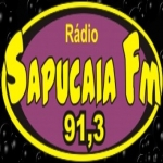 Logo da emissora R�dio Sapucaia 91.3 FM