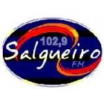 Logo da emissora R�dio Salgueiro 102.9 FM