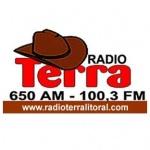 Logo da emissora Radio Terra 650 AM
