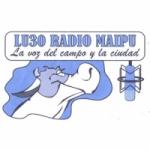 Logo da emissora Radio Maip� 1460 AM