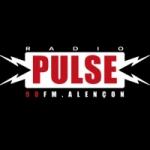 Logo da emissora Radio Pulse 90 FM