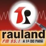 Logo da emissora R�dio Rauland 95.1 FM