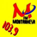 Logo da emissora Rádio Montanhesa 103.9 FM