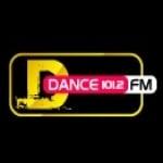 Logo da emissora DFM 101.2 FM