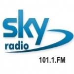 Logo da emissora Radio Sky 101.1 FM