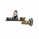 Logo da emissora R�dio Barra 87.9 FM