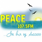 Logo da emissora Radio Peace 107.5 FM