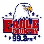 Logo da emissora Radio WSCH Eagle 99.3 FM