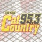 Logo da emissora WPLZ 95.3 FM