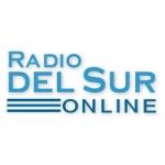 Logo da emissora Radio del Sur Online