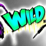 Logo da emissora WILD 96.3 FM