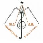 Logo da emissora Radio Sinfon�a 91.5 FM