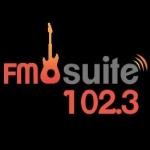 Logo da emissora Radio Suite 102.3 FM