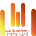 Logo da emissora Radio Monte Carlo 91.7 FM