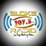 Logo da emissora Radio Bloke 107.5 FM